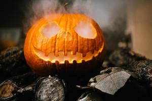 Newlands Pumpkin Trail