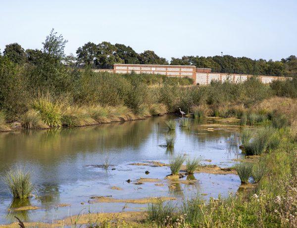 River Wallington