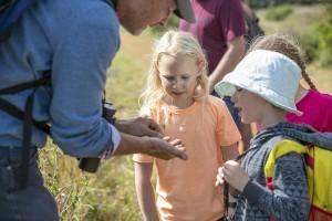 Wildlife Trust Meadow Sweep & Pond Dipping